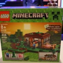 LEGO Minecraft: The First Night Box