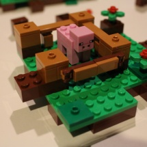 LEGO Minecraft: The First Night 20