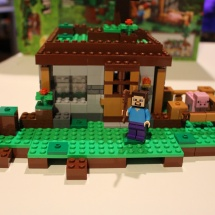 LEGO Minecraft: The First Night 22