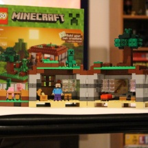 LEGO Minecraft: The First Night Complete