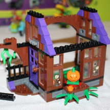 LEGO Mystery Mansion 20
