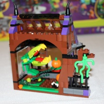 LEGO Mystery Mansion 21
