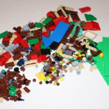 LEGO Lakeside Lodge Pieces
