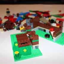 LEGO Lakeside Lodge 5